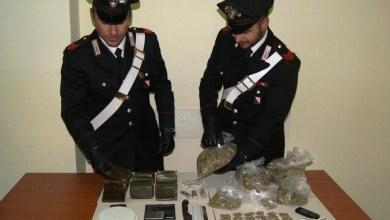 Photo of Calvizzano – Incensurato sorpreso con oltre 4 kg di stupefacenti: arrestato