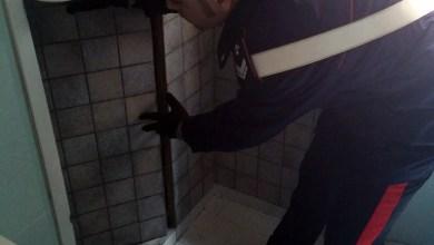 Photo of Caivano – Droga in intercapedine box doccia: carabinieri arrestano 45enne