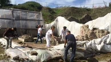 Photo of Pompei – Iniziati i lavori recupero Schola Armatorum