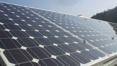 Photo of Liveri – Fanno razzia di pannelli solari e cavi di rame: arrestati tre rumeni
