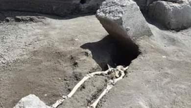 Photo of Pompei – In fuga dall'eruzione: emerge la prima vittima dal cantiere