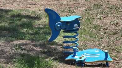 Photo of Trecase – Vandali in azione in villa comunale
