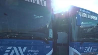 Photo of Campania, Trasporto pubblico – Consegnati 260 nuovi autobus