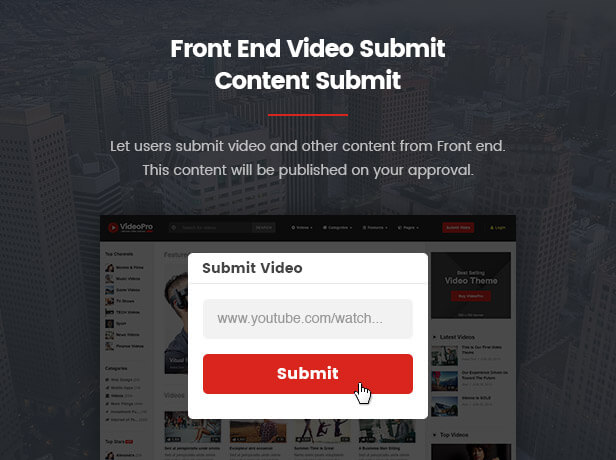 VideoPro - Video WordPress Theme - 13