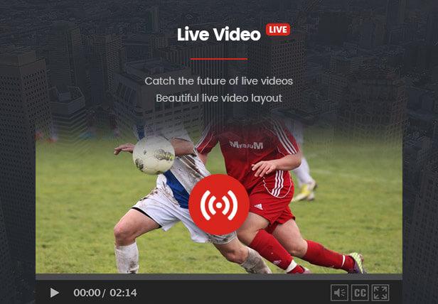 VideoPro - Video WordPress Theme - 18