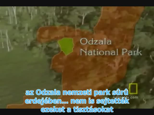 on the origin of cultures I (Hungarian Subtitles)