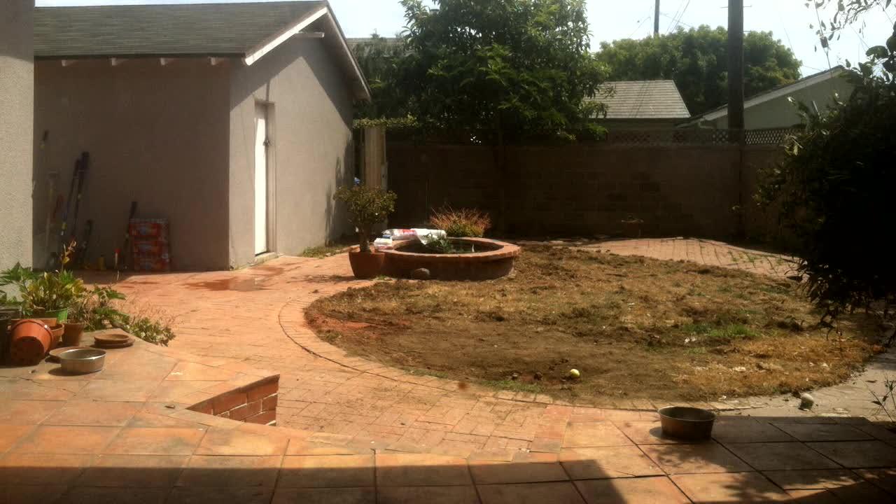 Backyard Demo Day 1