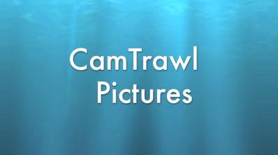 CamTrawl