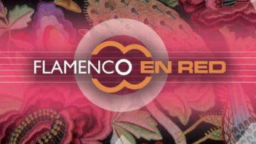 flamencocool_flamenco en red
