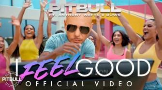 Pitbull Ft. Anthony Watts &Amp; Djws - I Feel Good (Official Video)