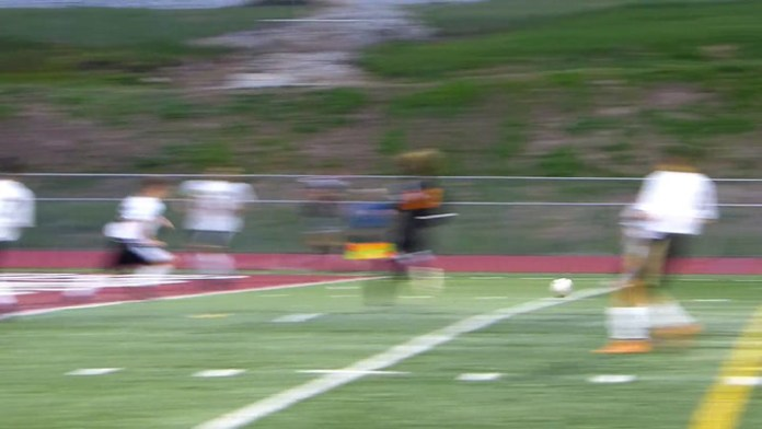 Watertown's Tedesco scores in NVL boys soccer final