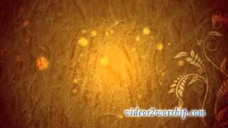 Thanksgiving Wheat Motion Loop