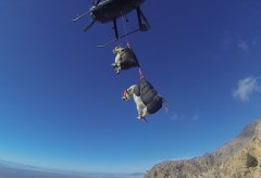 Featured Vid #245 – The Best Way to Move Mountain Goats? Helicopters.