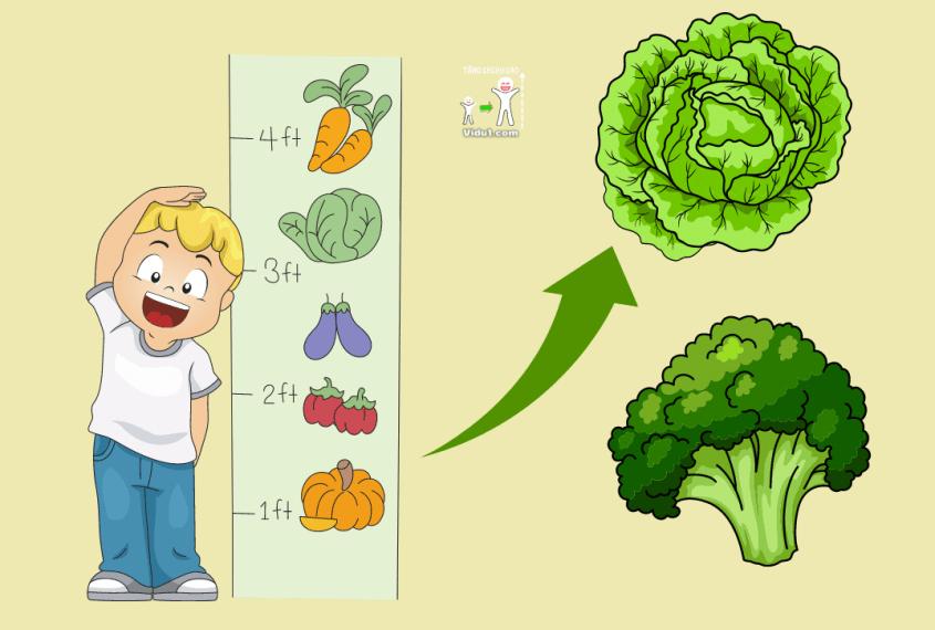 rau chứa canxi tăng chiều cao