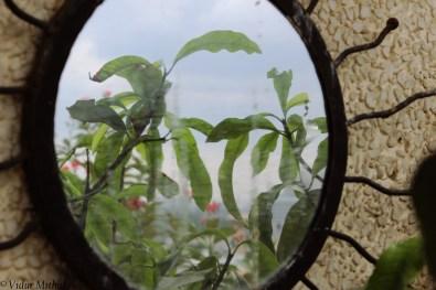 Photograph of a Mirror