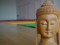 vidya-yoga-ravenna-la sala