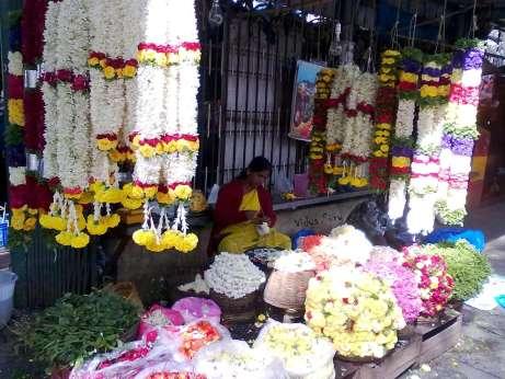 Vidya Sury Mindful Living