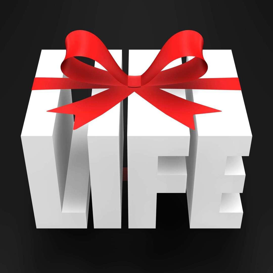 organ donation day