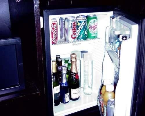 mini fridge vidya sury