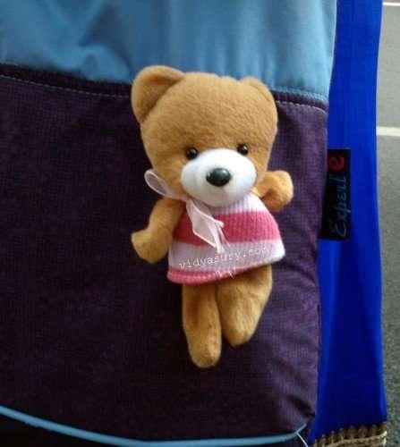 gratitude list teddy vidya sury