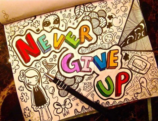 never give up vidya sury