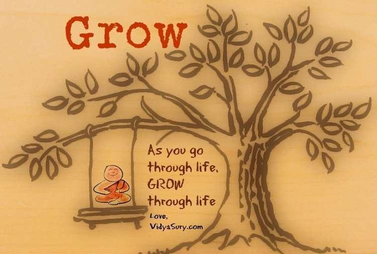 Grow Vidya Sury