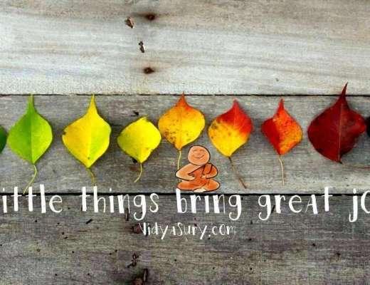 vidya sury little things