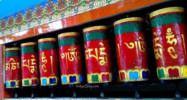 When I met The Dalai Lama Vidya Sury 3