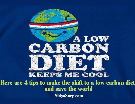 How to make the shift to a low carbon diet and save the world Vidya Sury