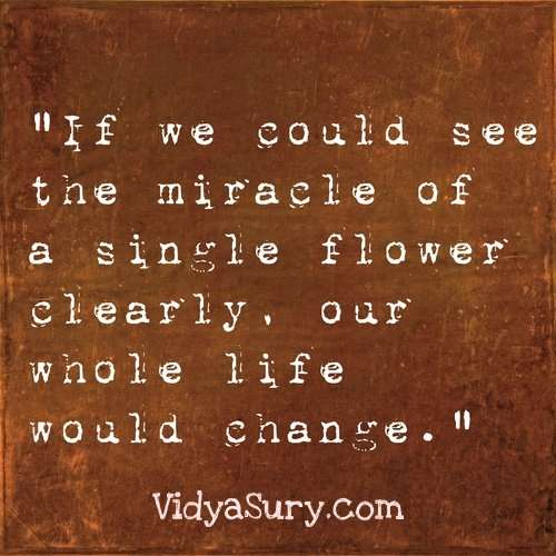 If we could see the miracle ... 25 Inspiring quotes to get your mojo back