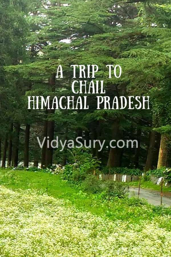 A trip to Chail Himachal Pradesh #Travel #Himachal #IncredibleIndia