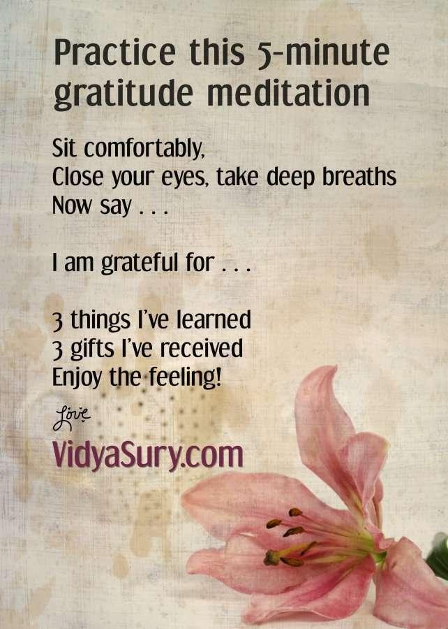 5 minute gratitude meditation. Acknowledging life gratefully.