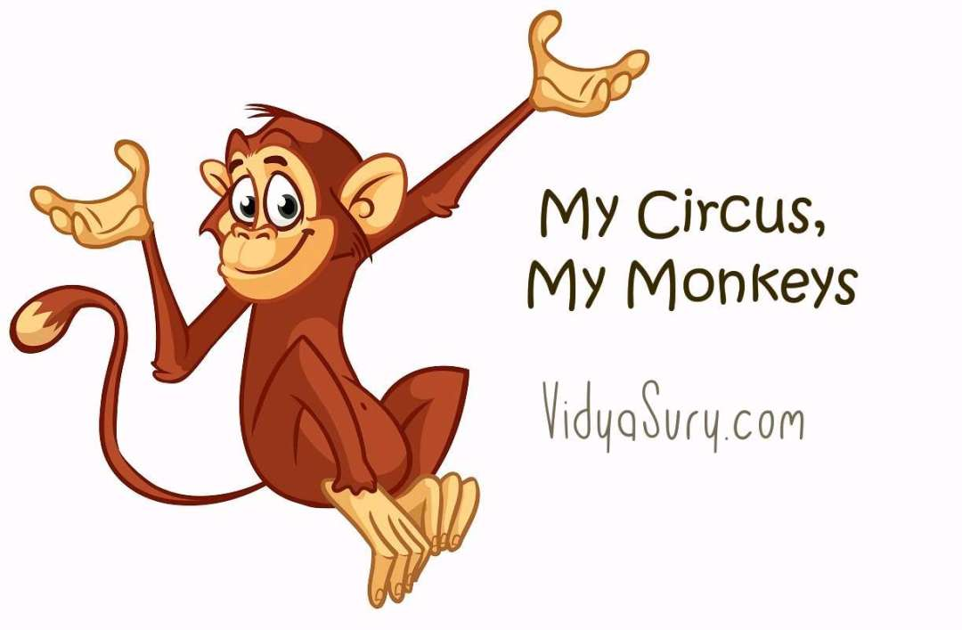 My Circus My Monkeys