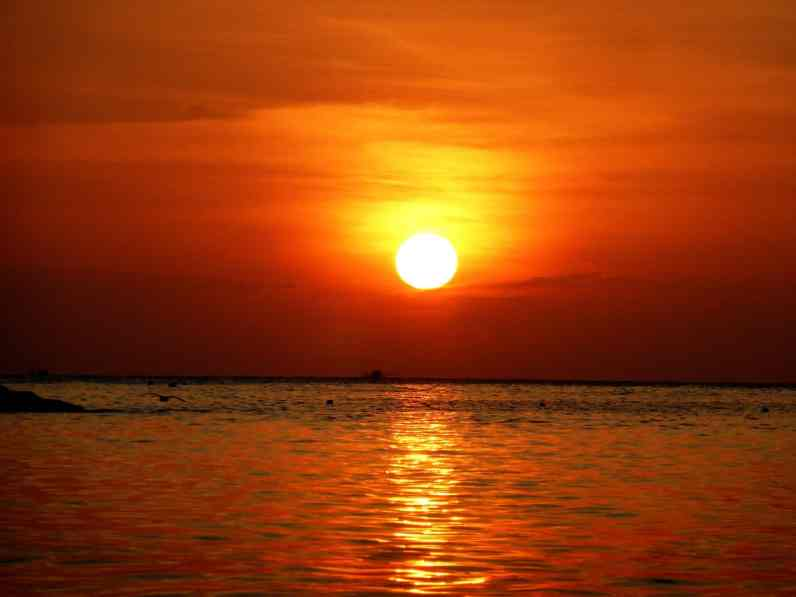 îles de Thaïlande - Koh Tao (11)