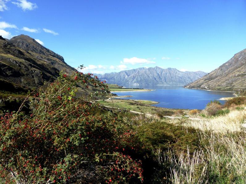 Lac Hawea-l'île du Sud