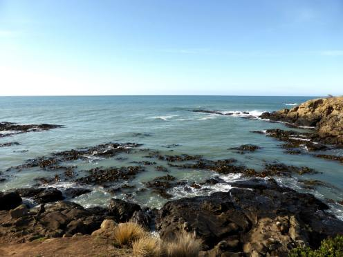 l'île du Sud-Moeraki (9)