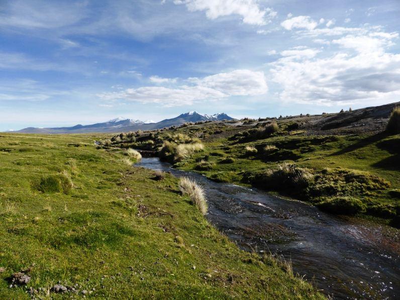 Rivière Parc de Sajama-Bolivie