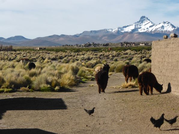 Village de Sajama-Bolivie