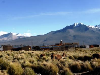 Parc de Sajama-Bolivie