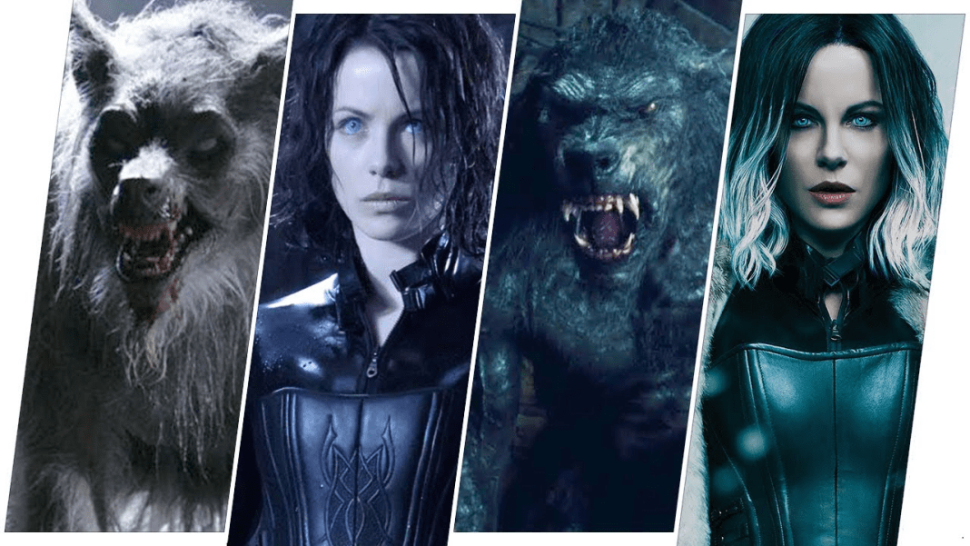 Underworld Movies in Order  Clan's Best Just for You