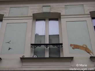 Un chat et les oiseaux. Rue Crémieux