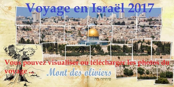 Israël- Vie et Lumière