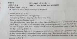 contrato de elink vietnam