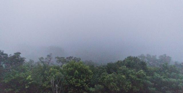 Tikal Guatemala Sonnenaufgang Tempel 4 Maya Ruinen Nebel