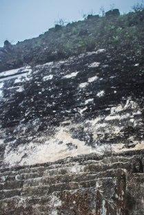 steil_nach_oben_Tikal