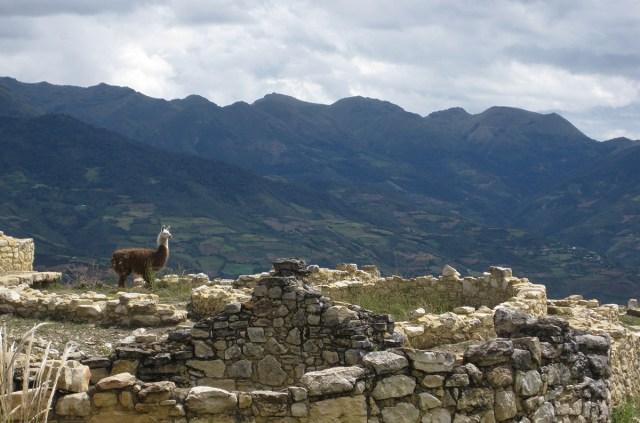 Chachapoyas - Ruinen von Kuelap