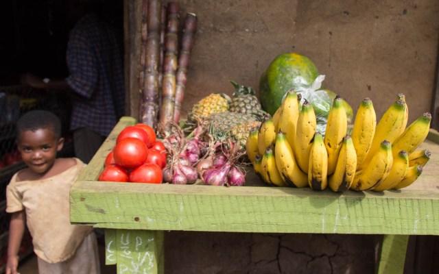 bwindi-nationalpark-buhoma-bwindi-lodge-45