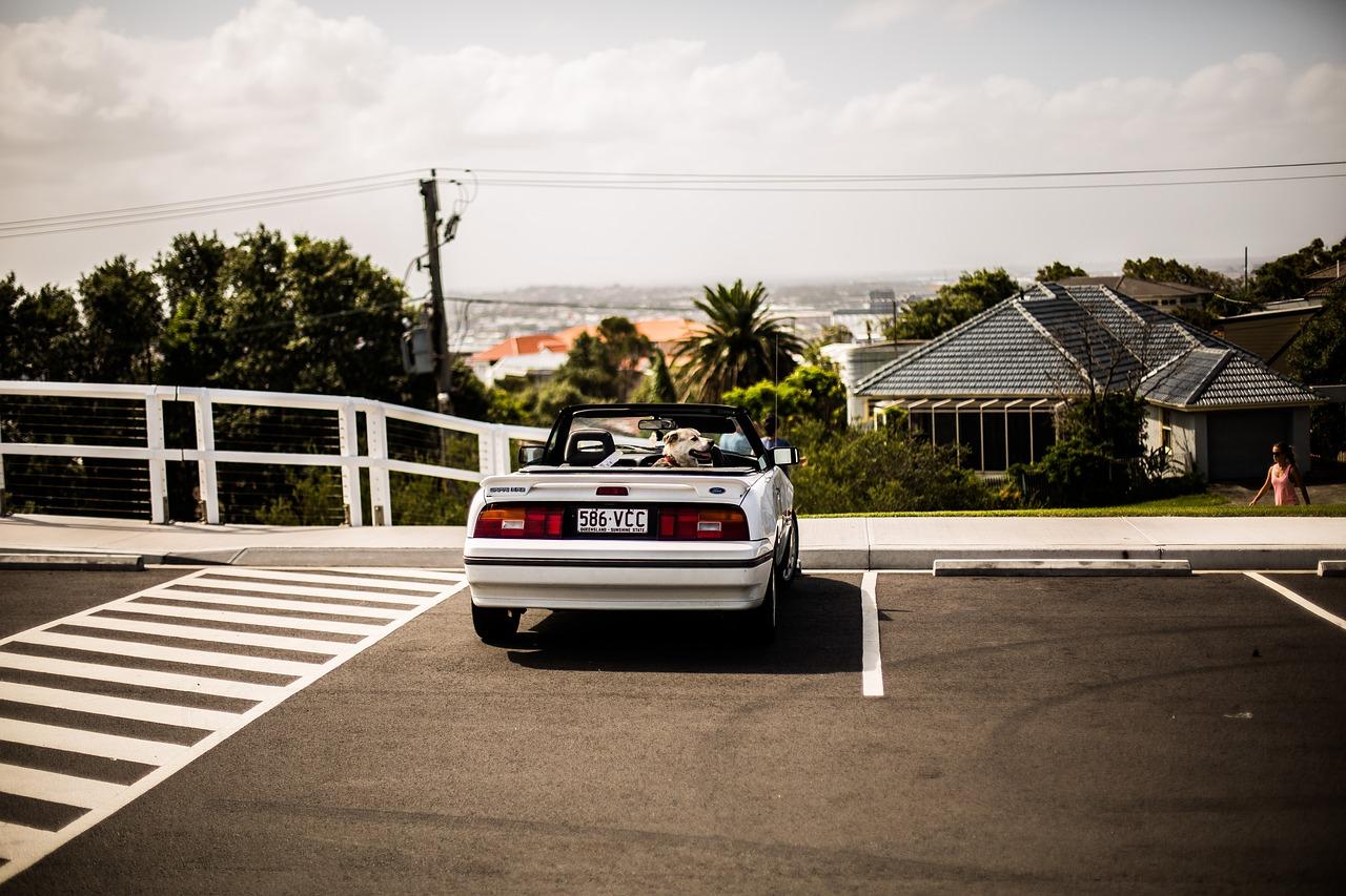 Bodensensoren zeigen freie Parkplätze an