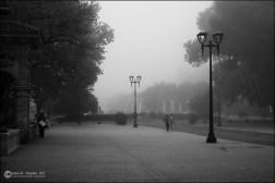 Mañana de nieblas