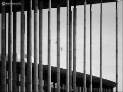Pabellón de España (Expo 2008) #8